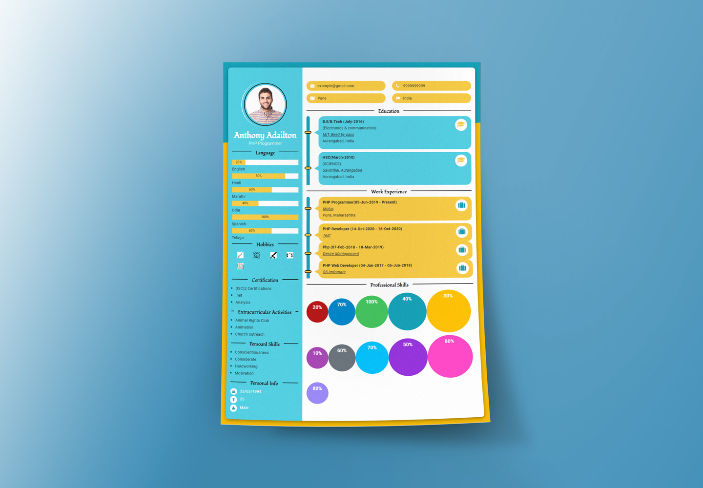 Create Your Infographics Resume